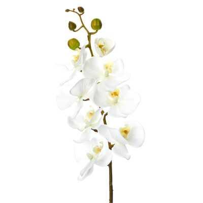 Phalaenopsis Faux Orchid Spray (Set of 12) - Wayfair