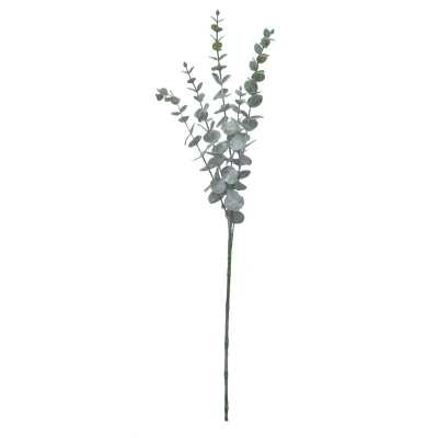 Gracie Oaks Frosted Eucalyptus Stems - Wayfair
