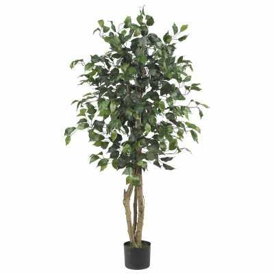 "Parkes Silk Ficus Tree in Planter-60""h - Wayfair"