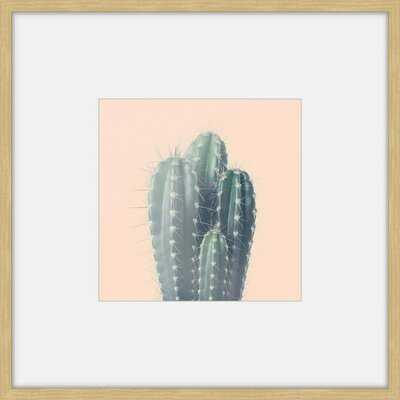 'Green Cacti' Framed Photographic Print - AllModern