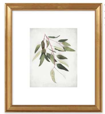 Eucalyptus Sprig One by Lupen Grainne for Artfully Walls - Artfully Walls