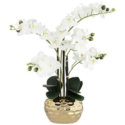 "White Phalaenopsis 23""H Faux Orchid in Gold Ceramic Pot - Lamps Plus"
