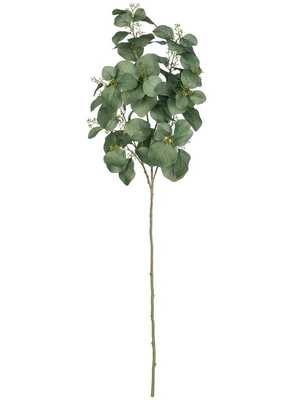 Eucalyptus Spray Stem - Wayfair