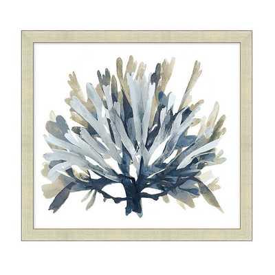 "Ballard Designs Seaside Coral Framed Print - Silver  28"" x 30"" - Ballard Designs"
