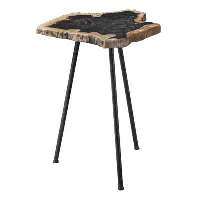 Mircea Petrified Wood Accent Table - Hudsonhill Foundry