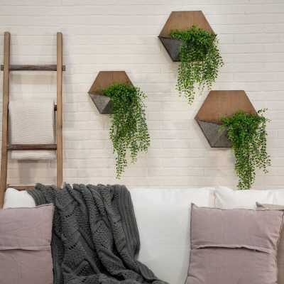 Dominga 3- Piece Iron Wall Planter Set - Wayfair