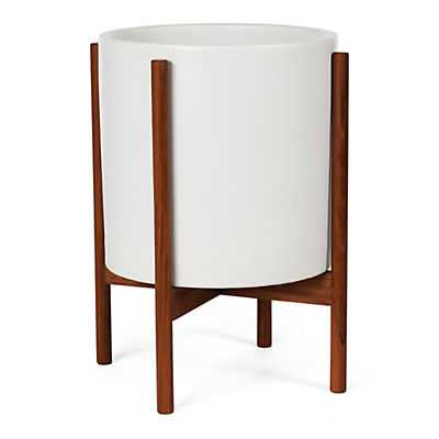 Case Study 17 diam 22h White Planter with Walnut Stand - Room & Board