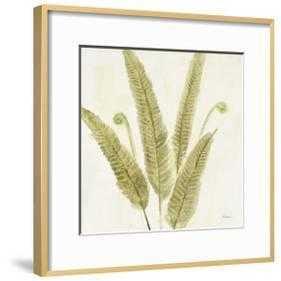 "Forest Ferns II - Ronda Ii Gold -  16"" x 16"" -  2.5"" Crisp - Bright White Mat -  Acrylic: Clear - - art.com"