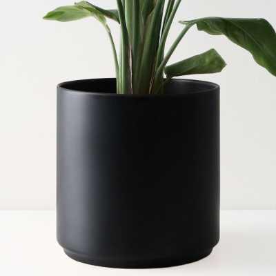 Peach & Pebble 10 Inch Modern Ceramic Planter, Matte Black - Wayfair