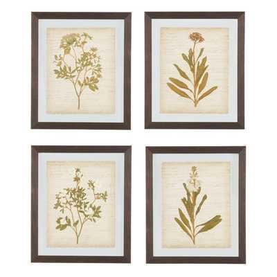 4 Piece Framed Painting Print Set - Birch Lane