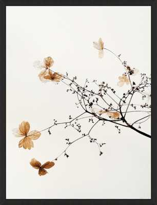 Hydrangea_No Matte - Artfully Walls
