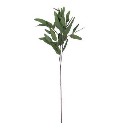 Artificial Eucalyptus Long Oval Leaf Stem - Wayfair