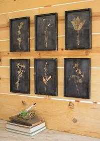Aged Botanical Print Set - art.com