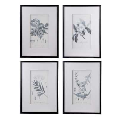 Botanical - 4 Piece Picture Frame Print Set on Paper - Birch Lane