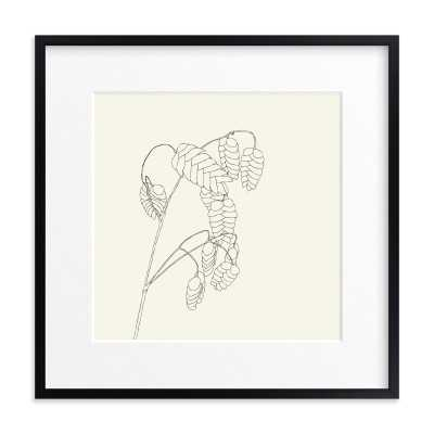 """Grass With Seed Art Print /  24"""" x 24"""" Rich Black Wood Frame, Matted - Minted"""