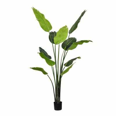 """72"""" H x 26"""" W x 26"""" D Artificial Palm Tree in Pot - Wayfair"""