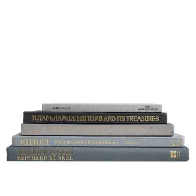 5 PIECE GRANITE COLORSTAK AUTHENTIC DECORATIVE BOOK SET - Perigold