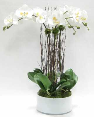 ARTIFICIAL SINGLE PHALAENOPSIS ORCHID FLORAL ARRANGEMENT IN PLANTER - Perigold