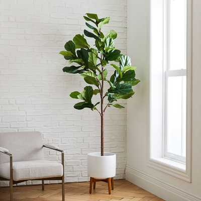 7' Faux Fiddle Leaf Fig Tree + Wide Mid-Century Turned Wood Leg Planter Set - West Elm