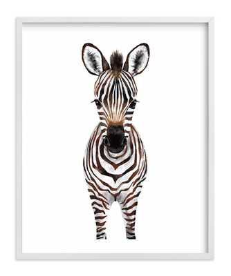 Baby Zebra 2 Art Print 16 x 20 - Minted