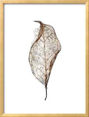 Leaf - art.com