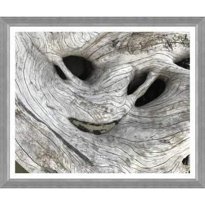 Soicher Marin 'Weathered Driftwood' Framed Photographic Print - Perigold