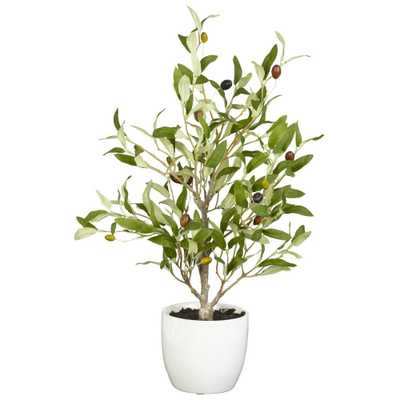 "18"" Olive Silk Tree w/Vase (Set of 2) - Fiddle + Bloom"