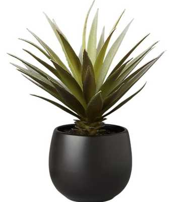 "FAUX POTTED SUCCULENT WITH BLACK POT 7"" - CB2"