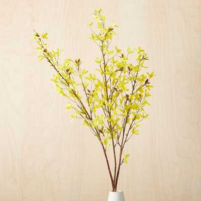 Faux Yellow Forsythia Tree Branch - West Elm