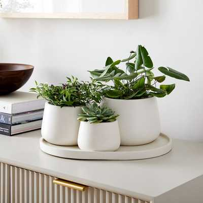 Dahlia Planter Set - West Elm