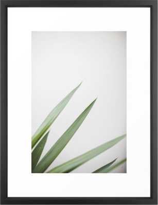 plant framed art print - Society6