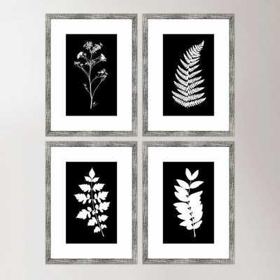 'Impressions' 4 Piece Picture Frame Print Set - Birch Lane