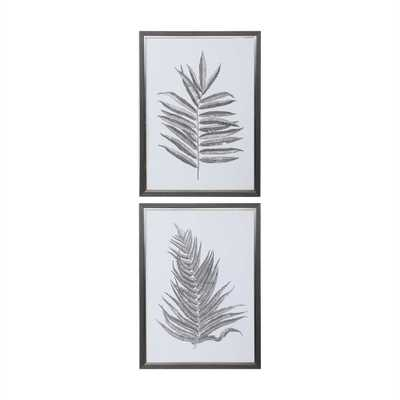Silver Ferns Framed Prints, S/2 - Hudsonhill Foundry
