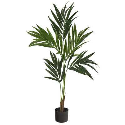 4' Kentia Artificial Palm Tree - Fiddle + Bloom