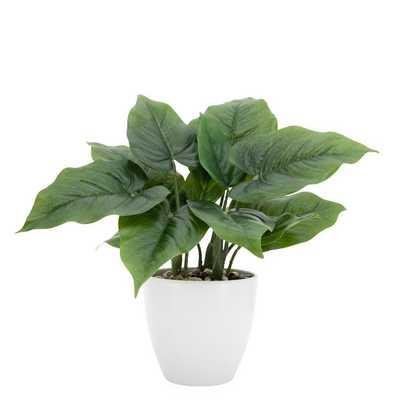 """Villa Faux Potted 12"""" Plant - Calla Leaf - Burke Decor"""