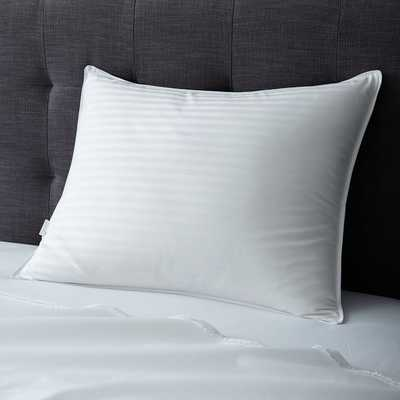 Premium White Down Pillow Insert, Standard - West Elm