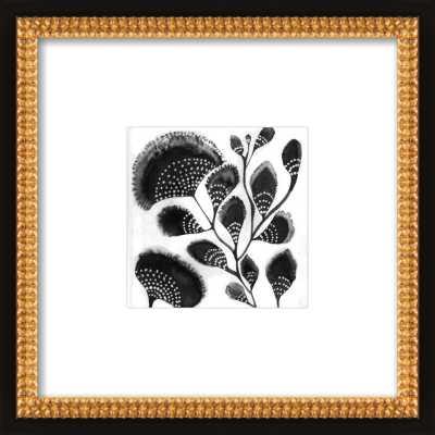 African Botanicals - Artfully Walls