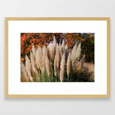 Pampas Grasses Framed Art Print - Society6