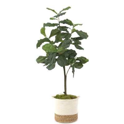 Faux Fiddle Leaf Fig Tree in Basket - Wayfair