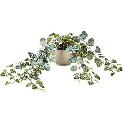 "POTTED FAUX EUCALYPTUS 8"" - CB2"