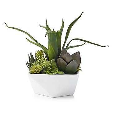 Aloe And Succulent Geo Pot - Z Gallerie