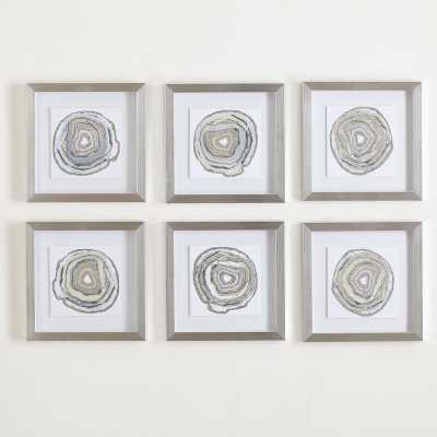 'Urban' Framed 6 Piece Photo Graphic Print Set on Paper - AllModern