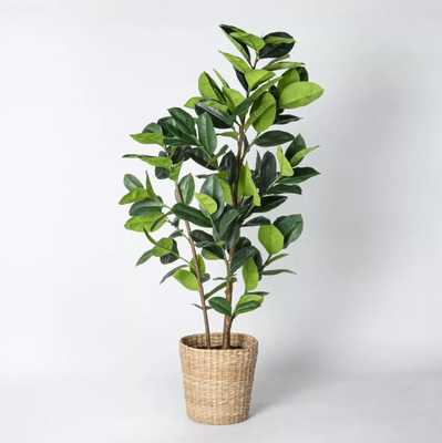 Artificial Rubber Leaf Tree in Pot Green - Threshold™ designed with Studio McGee - Target