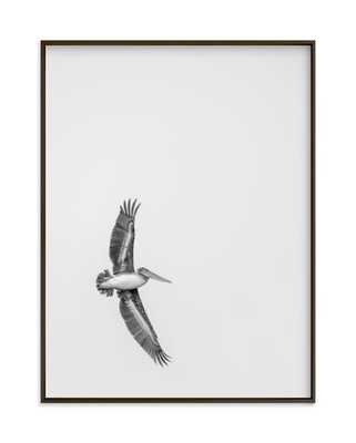 gliding pelican over lake - Minted