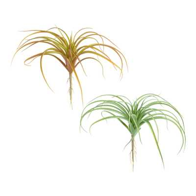 Faux Fall Air Plant Picks Set Of 2 - World Market/Cost Plus
