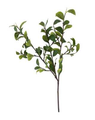 Gardenia Leaf Branch - McGee & Co.