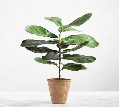 Faux Potted Fiddle Leaf Houseplant - Pottery Barn