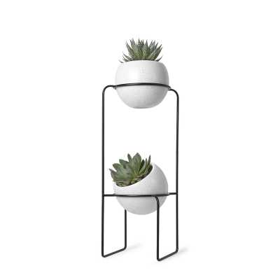 Nesta 2-Piece Ceramic Pot Planter - Wayfair