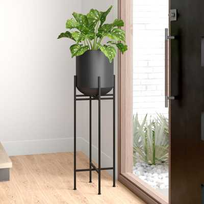 Adrianna Iron Pot Planter - AllModern