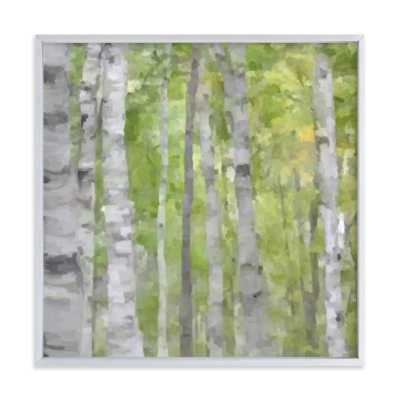"""Summer Birches  - 24"""" x 24"""" - Brushed Silver Frame - Minted"""